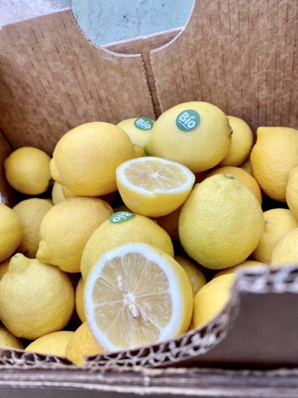 Limoni Primofiore invernali BIO