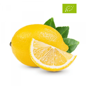 Limoni Primofiore Invernali Biologici