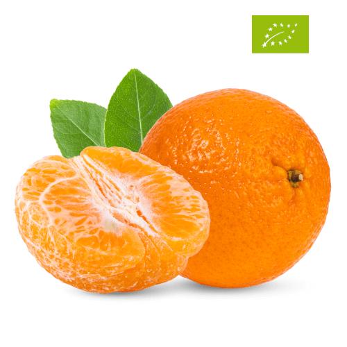 Mandarini di Siracusa Biologici